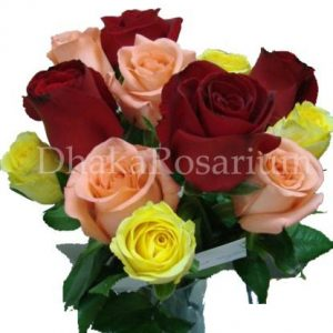 A Dozen Mixed Rose (WT01)