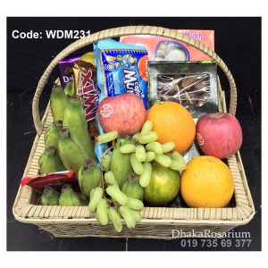 Code WDM231