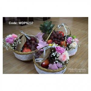 Code WDFS237